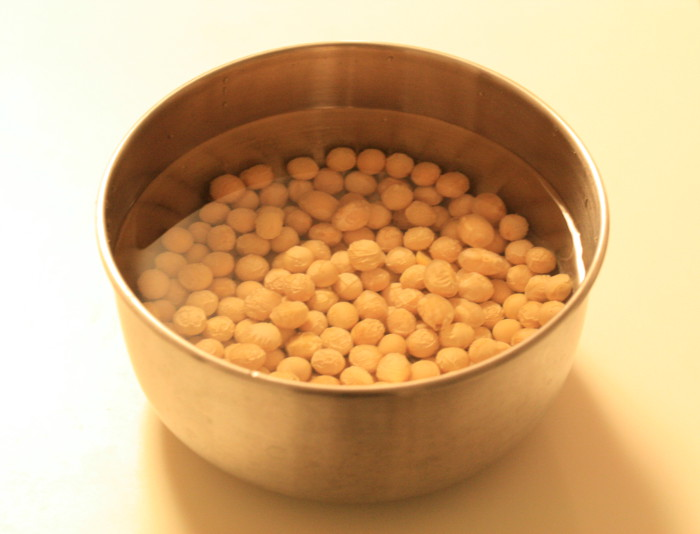 TANICA タニカ ヨーグルトメーカー「ヨーグルティア」YM-1200 お味噌作り